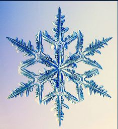 Would love this snowflake as a variation for an upper forearm tattoo