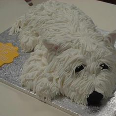 Doggies and cakes on pinterest