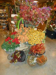 Fall Foliage at The Old Mercantile in Clarksville Tn. Call for shipping 931-552-0910  Like and Follow on Facebook.