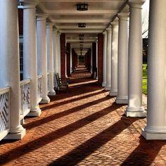 University of Virginia, Charlottesville, VA.  I've walked these brick paths a hundred times.