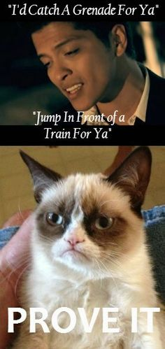 Funny pictures about Grumpy Cat Listens to Bruno Mars. Oh, and cool pics about Grumpy Cat Listens to Bruno Mars. Also, Grumpy Cat Listens to Bruno Mars. Grumpy Cat Quotes, Funny Grumpy Cat Memes, Funny Animal Memes, Funny Animals, Funny Jokes, Grumpy Cats, Cat Jokes, Funniest Animals, Cats Humor