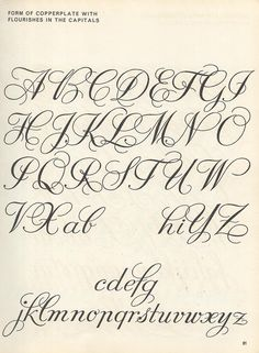 Image result for flourished copperplate calligraphy alphabet Script Lettering, Brush Lettering, Lettering Styles,
