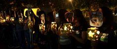 Colombia - Después de una fuerte tormenta en Medellín que pareciera de nunca acabar, la lluvia cesó y abrió un espacio en la noche para que una centena de activistas encendieran una luz en el marco de la conmemoración del Día Mundial del Animal Sin Hogar.
