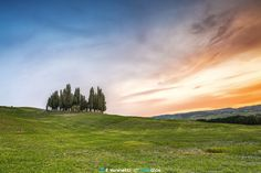 Cypresses - Val D'Orcia by Francesco Vaninetti on 500px
