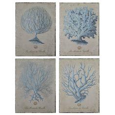 La Maison des Coralles Hand Painted Art Set of 4 @Sarah Nasafi Grayce