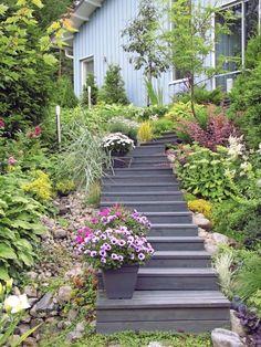Kukkiva rinnepuutarha - A Flowering Slope Garden Text and photos Sari Toikkanen www.viherpiha.fi