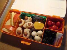 Fruit Fresh experiment ...