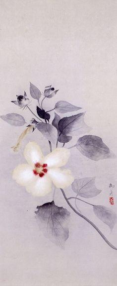 White Hibiscus (白芙蓉), Hayami Gyoshū (速水 御舟, 1894-1935)