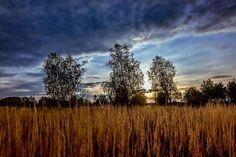 Sunrise by Waldemar Sadłowski