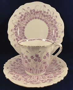 Wileman Shelley Foley China Trio Cup Saucer & Plate Circa 1904
