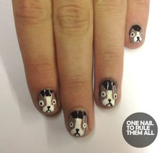 dog nails
