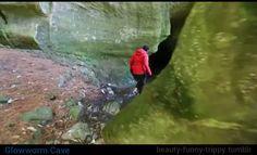 Glowworm Cave, trippy time-lapse video (Waitomo, New Zealand) {http://beauty-funny-trippy.tumblr.com/post/149865593870/glowworm-cave}