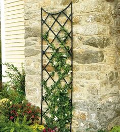 3' Tall Powder-Coated Steel Black Trellis Extension . $29.95. Standing 9' tall, our Giant Trellis makes an impressive presentation. Mount it on the side of the house or barn and watch your plants grow extra-tall. Optional extensions enable you to add more height in 3' increments. Mounts to exterior wall. The sky's the limit! Powder-coated steel in black finish.