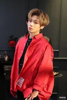 has preparing for solo comeback in May! Park Jihoon Produce 101, Produce 101 Season 2, Banff National Park, Kpop, Hyde Park, Chinese Movies, Korean Actors, My Idol, Actors & Actresses