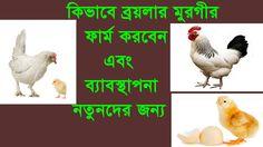 পোল্ট্রি ফার্ম করুন স্বাবলম্বি হউন ( Introduction-2)