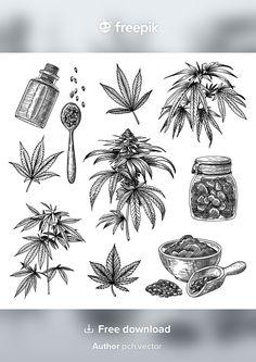 Engraving Illustration, Hemp, Grass, Vector Free, Tapestry, Herbs Illustration, Watering Plants, Cannabis Plant