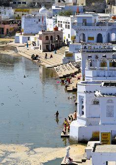 La Foire de Pushkar 2013 : une découverte mythique du Rajasthan