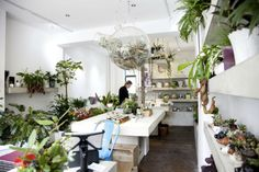 Grace and Thorn shop, London. Plant Companies, Plastic Pots, Green Plants, Industrial Style, Perfect Place, Townhouse, Planting Flowers, Modern Design, Table Settings