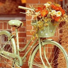Have the bike must get a basket and some flowers!