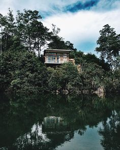 Living in this jungle treehouse, even just for a moment.