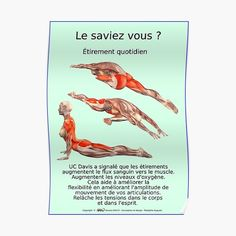« Planches Musculo-squelettique des positions de Yoga - N°35 » par rodolphe Augusto | Redbubble Yoga World, Workout Aesthetic, Fitness Aesthetic, Yoga Positions, Nutrition Program, Yoga Lifestyle, Best Yoga, Boutique, How To Do Yoga