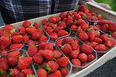Benoit et Sandra Drozdz producteurs de pommes et fraises | Localiv.fr Benoit, Strawberry, Fruit, Food, Apple Juice, Strawberries, Apples, Essen, Strawberry Fruit