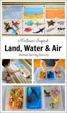 Introducing Toddlers to Animals in Land, Water and Air