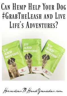 Can Hemp Help Your Dog and Live Life's Adventures? Grain Free Dog Food, Free Food, Allergy Free Recipes, Dog Food Recipes, Dog Skin Allergies, Oils For Dogs, Cbd Hemp Oil, Best Dog Food, Crate Training