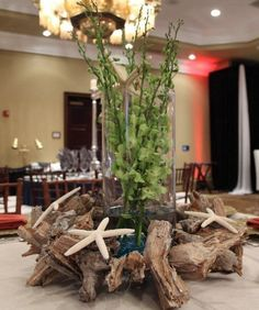 massive center piece for beach party. I would add lights in the glass Themed Parties, Party Themes, Birthday Parties, Party Ideas, Salty Cowboy, My Super Sweet 16, Twig Furniture, Island Theme, Beach Shower