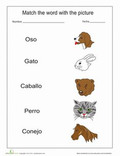 Are you a gato person or a perro person? Match the animal pictures with the Spanish words for them.