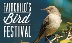 Announcing a special event for avian enthusiasts and birding novices alike! Join us for our annual Bird Festival, October 6 & 7. Enjoy lectures from leading experts, educational kids activities, bird walks hosted by the Tropical Audubon Society and more!