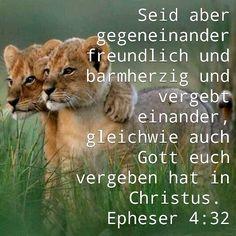 Sei freundlich, barmherzig und vergebet einander.