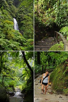 Dominica: An unforgettable trip. Our itinerary with pictures and stories.