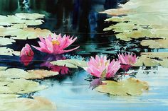 The dark reflections made a perfecct foil for these visual gifts. watercolor 14 X 22 inches by Carl Purcell Watercolor Water, Watercolor Landscape, Watercolor Flowers, Watercolor Paintings, Watercolours, Lotus Flower Art, Lotus Art, Lotus Painting, Lily Painting