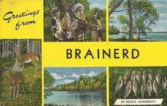 Greetings from Brainerd, Minnesota postcard