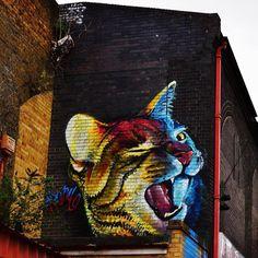 #ストリートアート  #ロンドン  #アート  #落書きアート  #壁アート  #スタイル  #ロンドン写真  #美しいロンドン  #ロンドン大好き #ネコ #orcacollective
