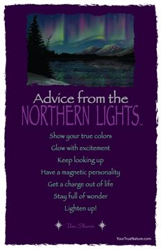 Advice from the Northern Lights Frameable Art Postcard