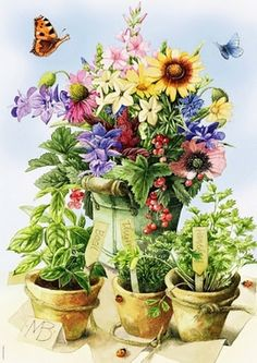 ✿Bouquet & Full Of Flower Basket✿