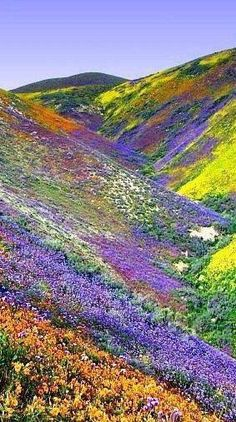 "California near Tehachapi State Park, 2005 photo award ""God's Paint Spill"" in the Temblor Mountain Range in California   Via - The Earth Site"