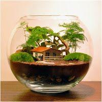 Teraryum Mini Bahçe Nasıl Yapılır