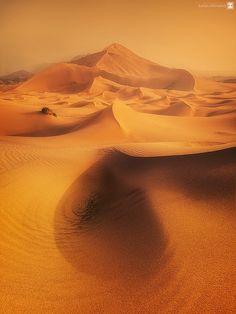golden dune by sultan alghamdi - Photo 28457581 / 500px