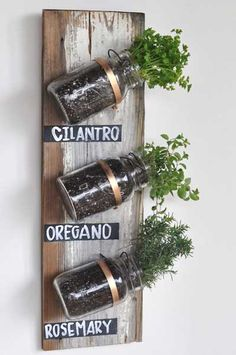 Mason Jar Herbs: Mason jars may be a cliché, but we gotta admit, they're tailor-made for an indoor herb garden and crazy-easy to assemble. Click through for more indoor herb garden ideas. Mason Jar Herbs, Mason Jar Herb Garden, Herbs Garden, Garden Web, Mason Jar Planter, Hanging Mason Jars, Pots Mason, Succulents Garden, Garden Design