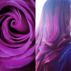 Bright Purple Ombre Bayalage by Jennifer Warner Mode Salon Las Vegas Hair Stylis Purple Ombre, Bright Purple, Purple Hair, Jennifer Warner, Ombre Bayalage, Vegas Hair, Hair Color And Cut, Hair Type, Las Vegas