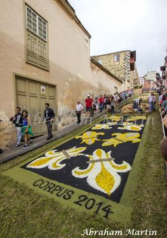ALFOMBRAS DEL CORPUS CHRISTI (INFRAOCTAVA) DE LA OROTAVA, 2014 - A MF - Álbumes web de Picasa