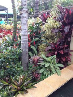 Warm Tropical Backyard Landscaping Ideas (13)