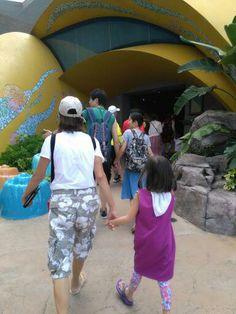 Ocean Park, Aquarium, Fish Stand, Fish Tank, Aquarius