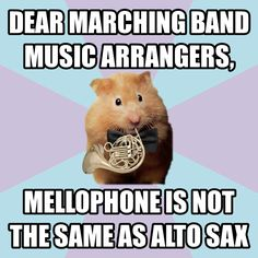 Not just mellophone but concert horn too , Haha yes, it's a mellophone, completely different instrument!