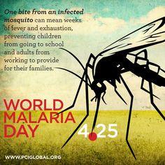 World Malaria Day is April 25th, 2013 #malaria #health #disease