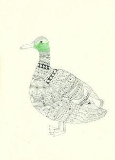 Birds. - Katt Frank Illustration.