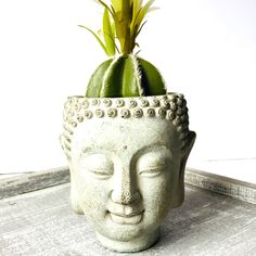 Unique independent store in Mississauga, carrying unique gift ideas, on trend fashion and accessories, and home decor. Head Planters, Buddha Zen, Tabletop, Balcony, Concrete, Unique Gifts, Shelf, Living Room, Elegant